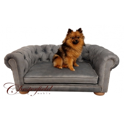 Sofa Chesterfield dla psa